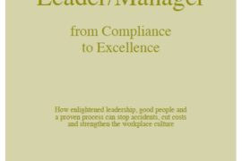 e-books-safety-for-the-leader-and-manger