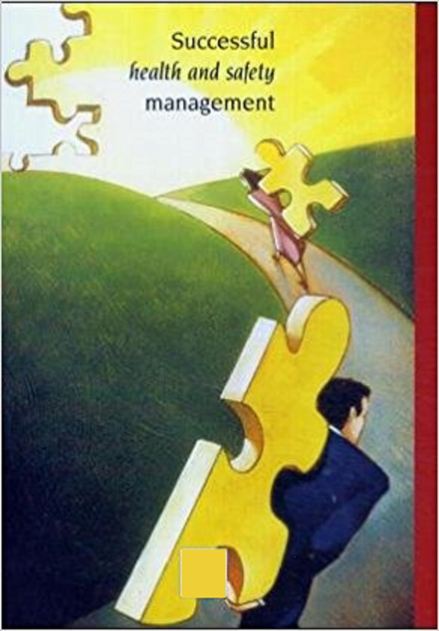 E-Books:Successful health and safety management
