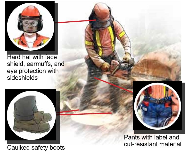 Limb & body protection-Chainsaws