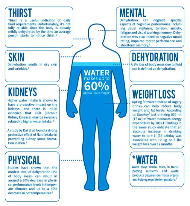 How Does Dehydration Impact Workplace Safety
