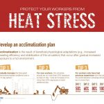 Heat Stress: Working Safely in the Heat